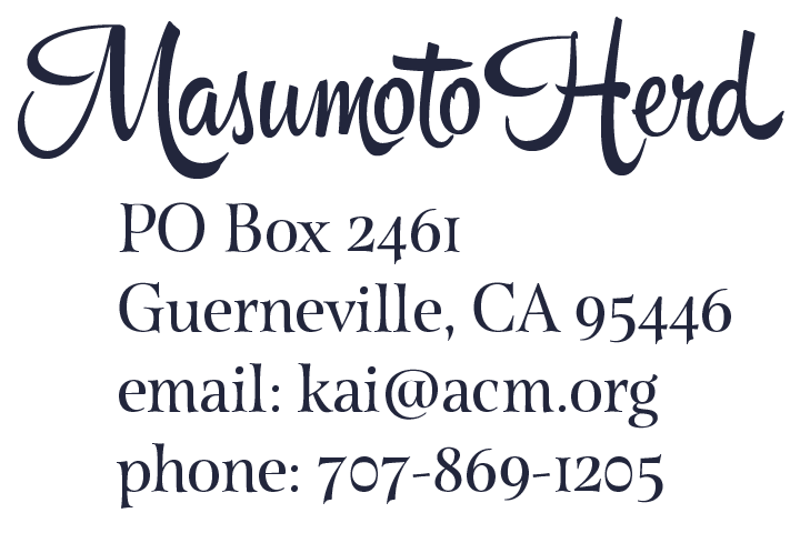 Masumoto Herd Contact Information